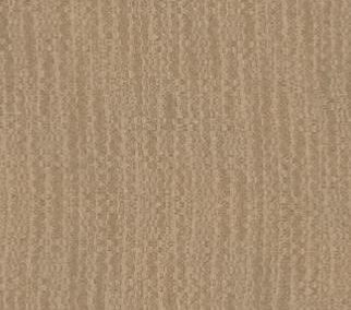 BAILEY Fabric Spice